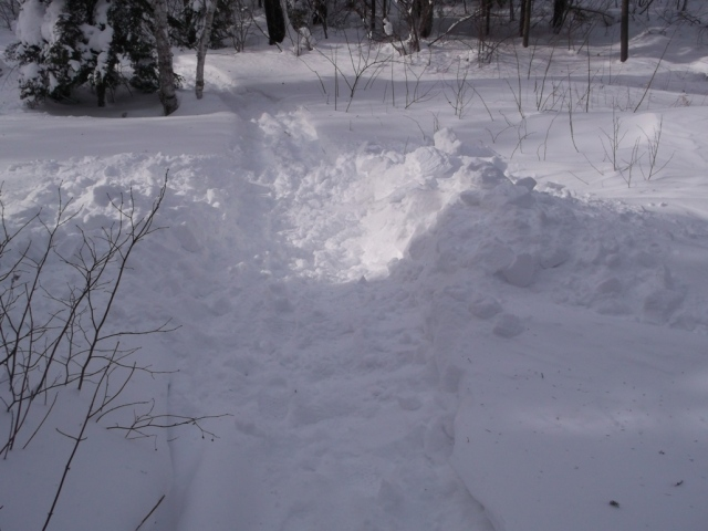 Digging out the snowmobile trail