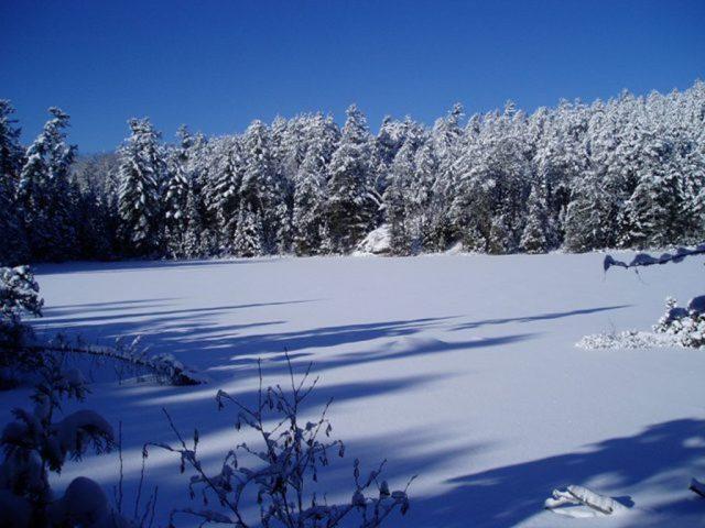 photo of Lake Temagami