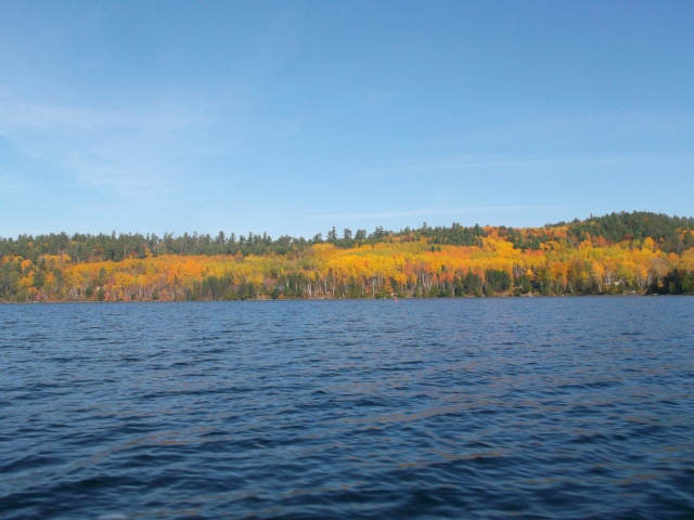 Bear Island (2)