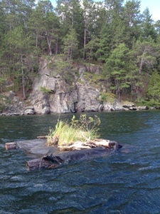Loon Nest Spring 2014